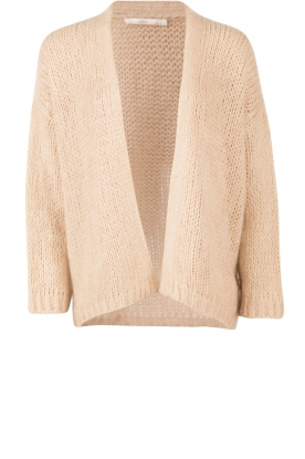 Aaiko |  Knitted cardigan Dylene | natural