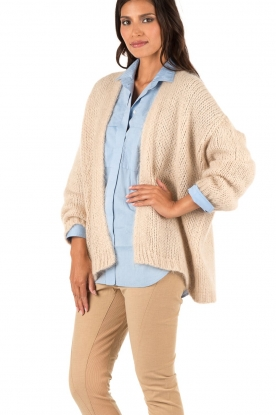 Aaiko | Gebreid vest Dylene | naturel