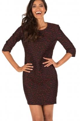 Dress Italy | burgundy