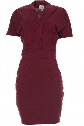 Dante 6 |  Dress with wrap detail Fairmont | red
