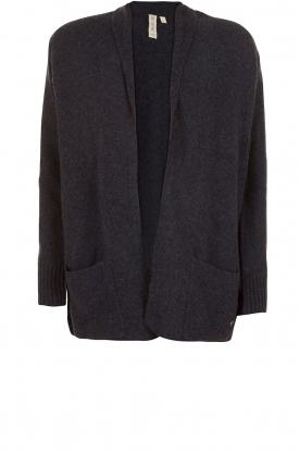Knit-ted | Wollen vest Meis | blauw