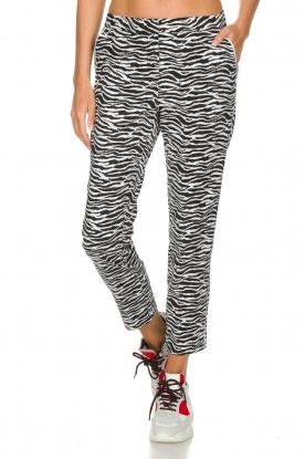 Aaiko |  Zebra print trousers Parien | black