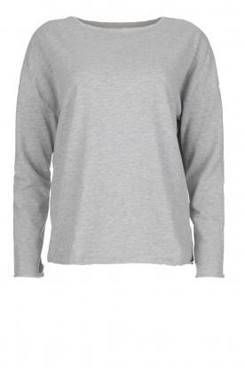 Juvia | Sweatshirt Sue | grijs