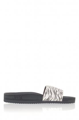 Juvia |  Flip-flops Zebra | black & white