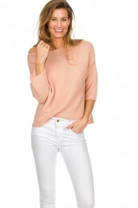 Aaiko |  Cotton knitted sweater Chena | nude