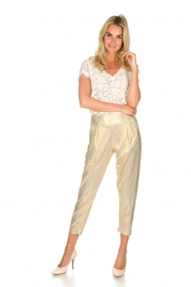Rabens Saloner |  Wide leg plissé pants with metallic finish Mabina | gold