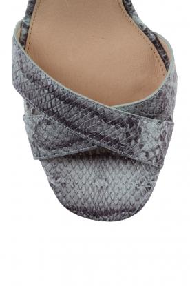 MICHAEL Michael Kors | Leren sandalen Divia | slangenprint lichtblauw