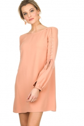ELISABETTA FRANCHI |  Dress Rosa | nude