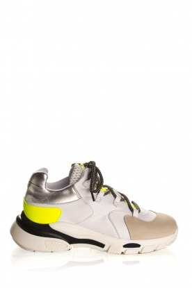 Toral |  Leather sneakers Talla | neon
