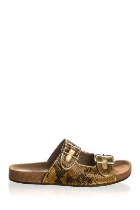 Toral | Leather flip-flops | brown