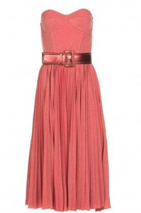 Elisabetta Franchi Strapless lurex jurk met beugel Phileine  roze