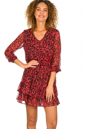 Freebird |  Leopard printed dress Georgia | red