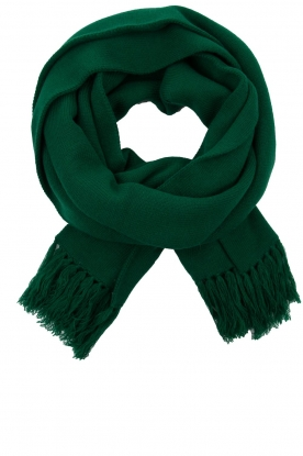 Essentiel Antwerp |  XL scarf Tupacco | green
