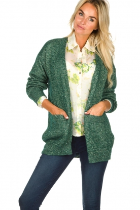 Patrizia Pepe |  Cardigan with lurex and sequins Nua | green