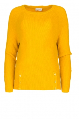 JC Sophie | Knitted sweater Ashton | yellow