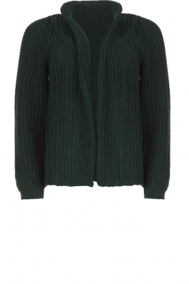 Be Pure |Knitted cardigan Marloes | green