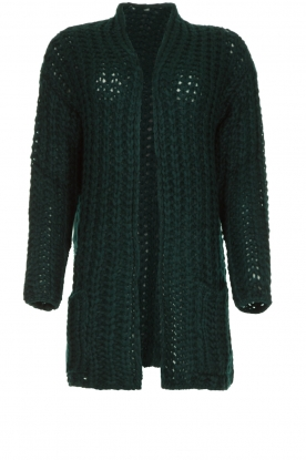 Be Pure |  Chunky knitted cardigan Charly | green