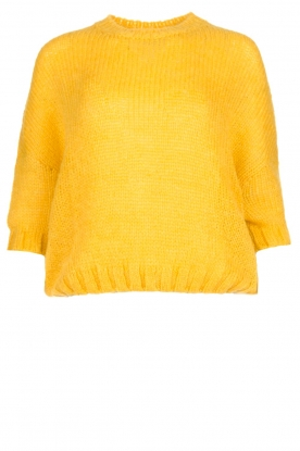 Be Pure |Knitted sweater Babette | yellow