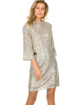 Patrizia Pepe |  Sequin dress Isabella | silver