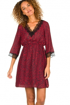Kocca | Dress with print Besidas | red