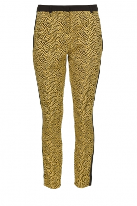 Aaiko |  Pants with zebra print Parien | yellow
