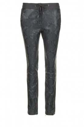 Aaiko | Faux leather pants Sosa | animal print