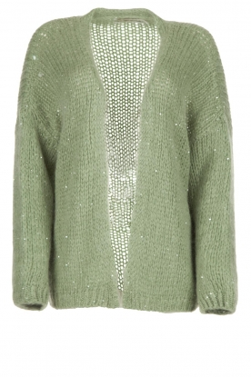 Aaiko |  Knitted cardigan with sequins Dylene | green