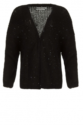 Aaiko |  Knitted cardigan Dylene | black
