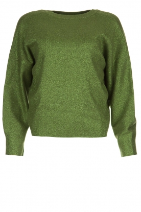 Aaiko |  Glitter sweater Verona | green