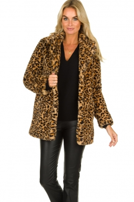 OAKWOOD |  Coat with animal print Leopard | animal