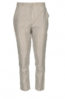 Aaiko |  Striped pants Agra | multi