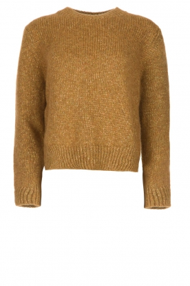 Knit-ted |  Sweater with lurex Banka | gold
