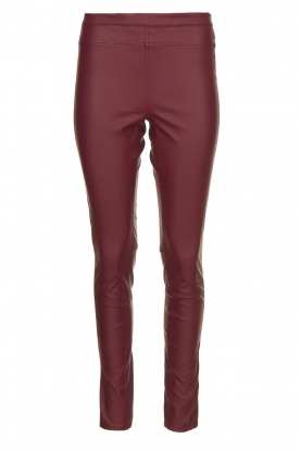 Knit-ted | Faux leather leggings Amber | red