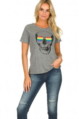 Chaser | T-shirt Rainbow | grijs