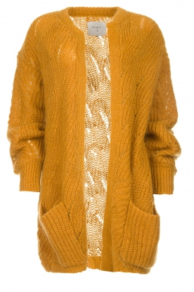 Dante 6 | Knitted cardigan Encore | yellow