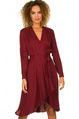 Dante 6 |  Leopard wrap dress Dayna | red