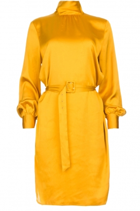Dante 6 |  Dress with belt Leto | ocher yellow