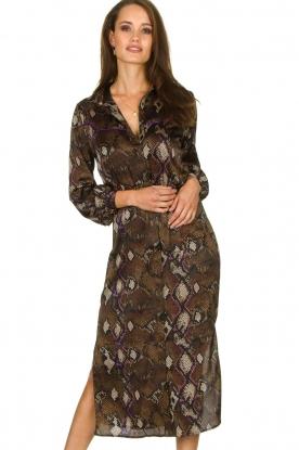 Dante 6 |  Dress with snake print Poween | brown