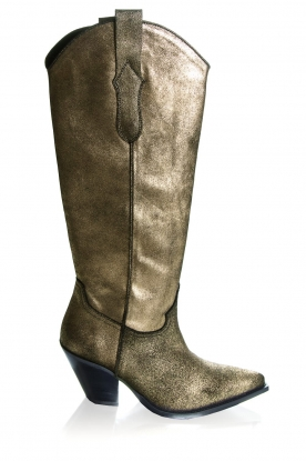 Toral | Leather boots Dore | gold