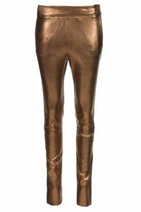 Dante 6 |  Metallic leather pants Lebon | metallic