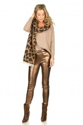 Dante 6 |  Metallic leather pants Lebon | metallic