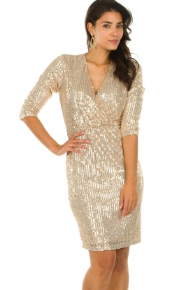 Set |  Dress with sequins Lulu | gold