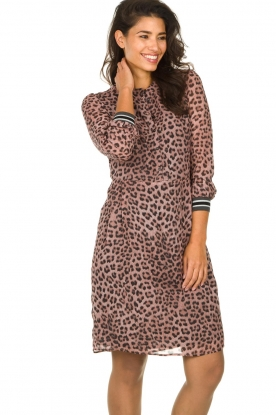 Set |  Dress with panther print Panter | pink