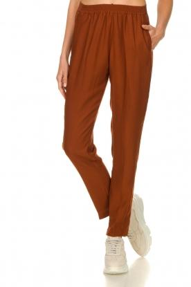 Dante 6    Satin pants  Bowie   brown