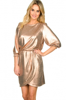 Dante 6 |  Metallic dress Virginie | metallic