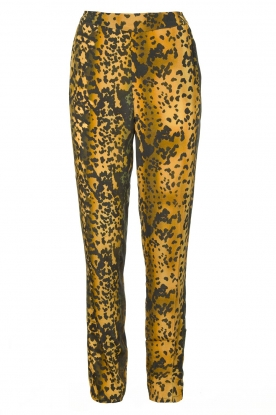 Dante 6 |  Leopard pants Verdict | black
