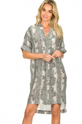 Notes Du Nord   Zijden jurk met print Oak   grijs