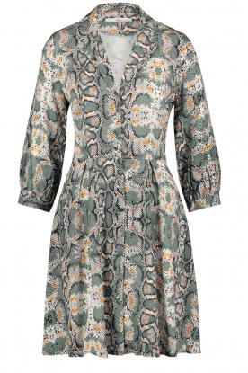 Aaiko |  Snake printed dress Terri | green
