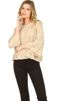 Aaiko |  Sweater with wide sleeves Thalia | beige