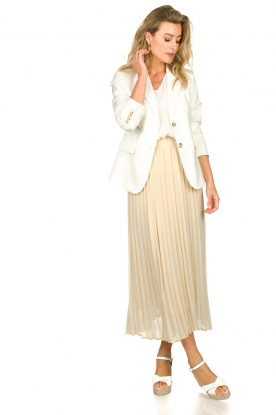 Look Long pleated skirt Deloris